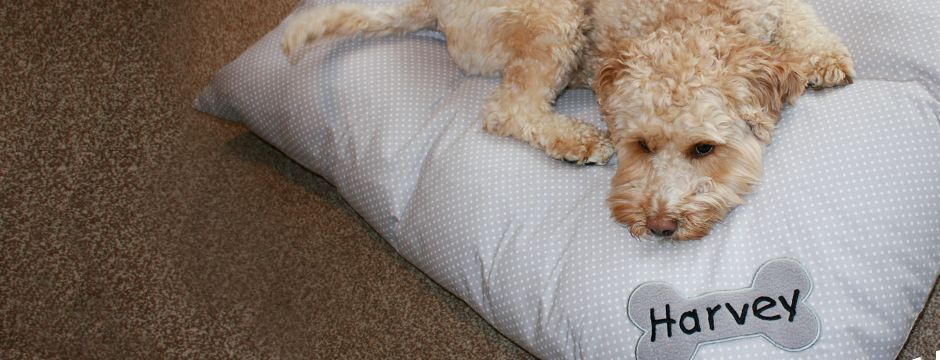 Personalised Dog Duvet Beds