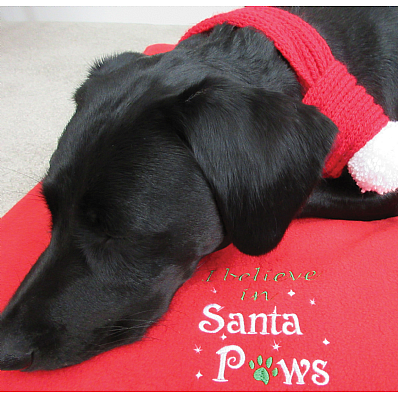 I Believe in Santa Paws Christmas Dog Blanket & Scarf Set